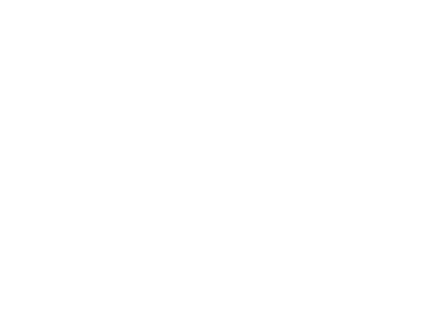 BosunCam